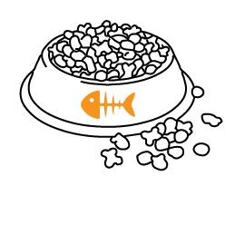 מזון יבש לחתולים